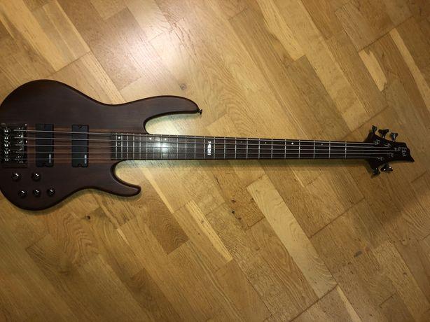 Gitara basowa 5 strunowa ESP LTDD5NS GRATIS! pokrowiec kabel 5m fender