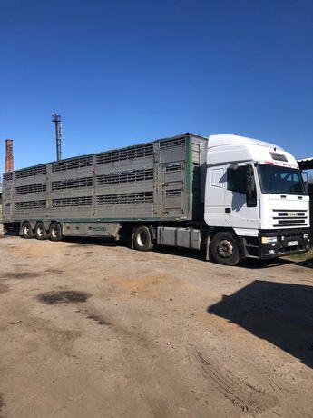 Перевозка (скотовоз) ВРХ, свині, вівці. До 20 тонн.