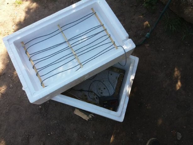 Inkubator do jaj