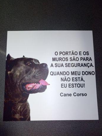 Placa AVISO Cane Corso cão guarda