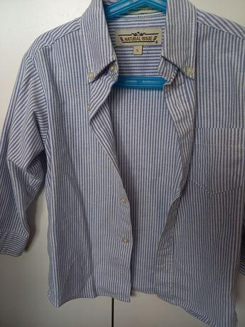 Koszule rozmiar od 116
