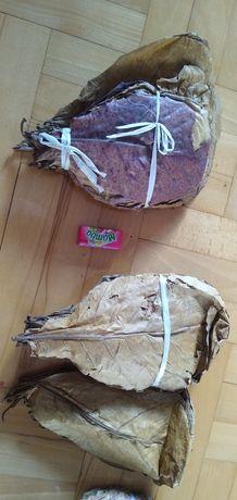 Liście ketapang / migdałecznik