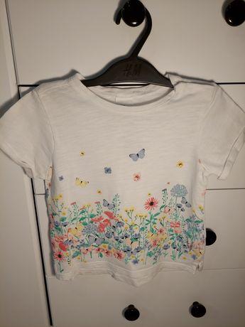 Koszulka h&m r. 74