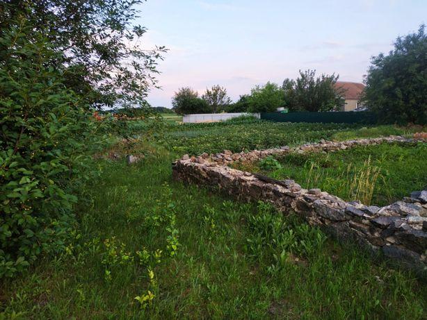 Продаж земельної ділянки м. Кам'янка