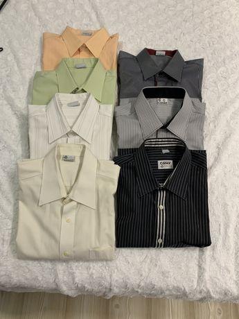 Koszula męska Conex r 41 182 krótki rękaw 7 szt.