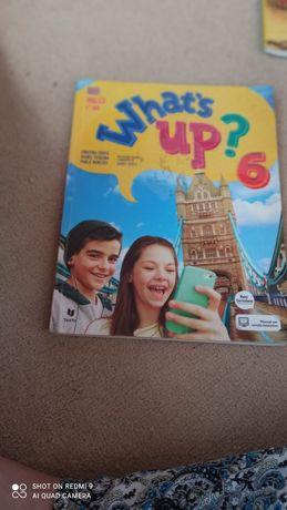 Livros  escolares completamente novo 7° ano