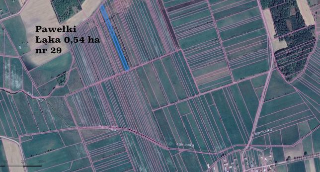 Łąka Pawełki, Szyszki, Wroczyńszczyzna (pakiet 3 łąk) 1,15 ha Sokółka