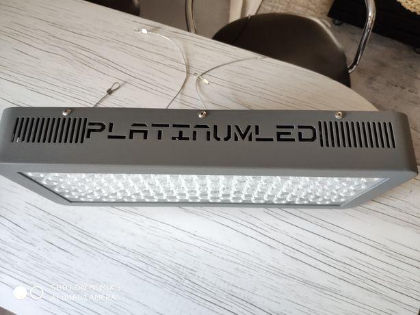 Advance PlatinumLed P 300