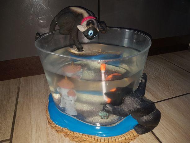 Akwarium dla bojownika żabek ozdobne