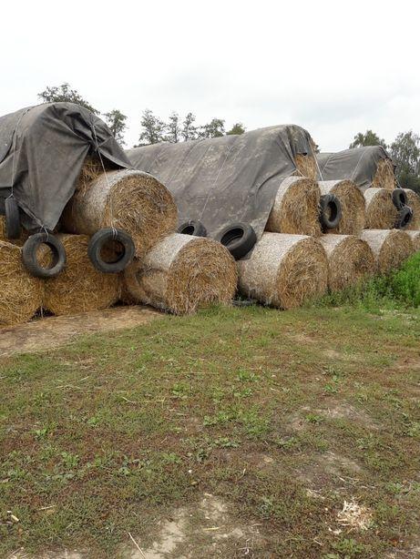 sloma sucha jak ze stodoly bale bele kostki przyczepa platforma slomy
