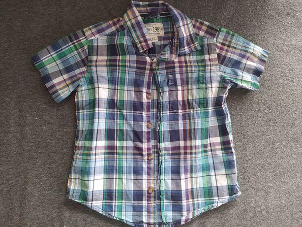Koszula krótki rękaw krata 104