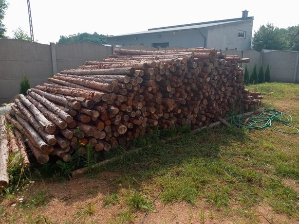 Stemple budowlane drewniane 3 Metry