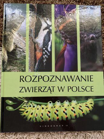 Rozpoznawanie zwierząt w Polsce