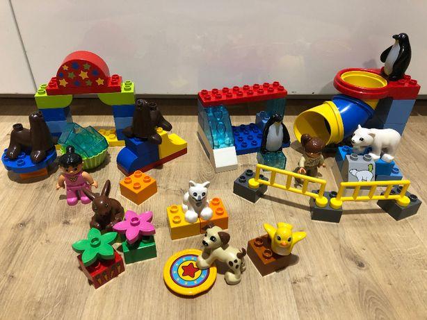 LEGO Duplo Polarne ZOO 5633 , Występ cyrkowy 10503 , Zwierzęta domowe