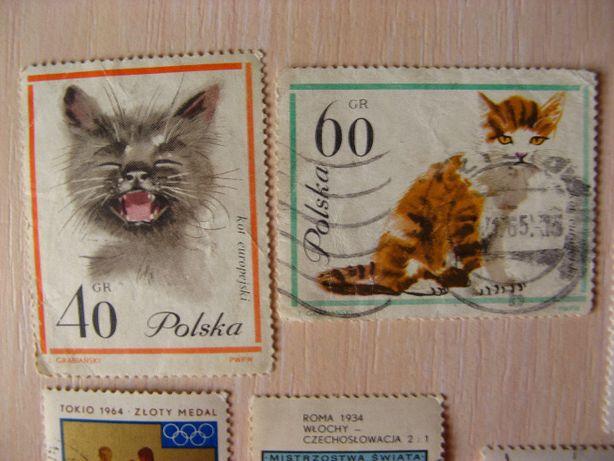 марка польша кот кіт серый бокс футбол панда медведь монголия 50 лет