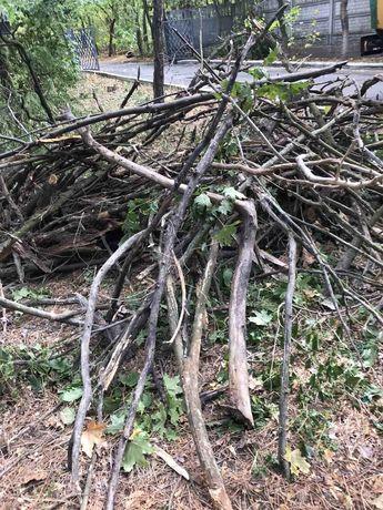 Продам дрова камаз дров доставка бесплатно