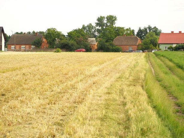 Działka w Borzęcicach plus grunt rolny