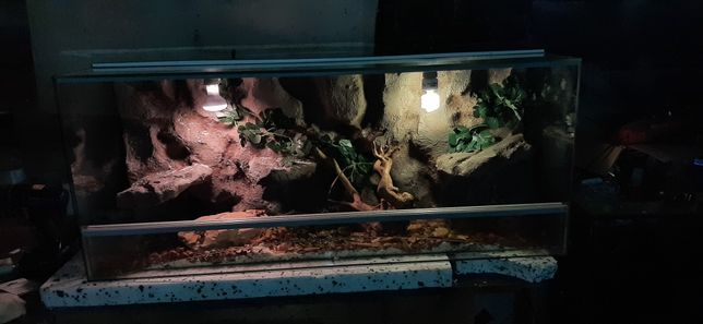 Terrarium 120x40x50 Diversa Agama Gekon Waz
