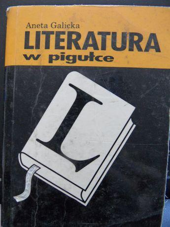 Poradnik Literatura w pigułce Aneta Galicka