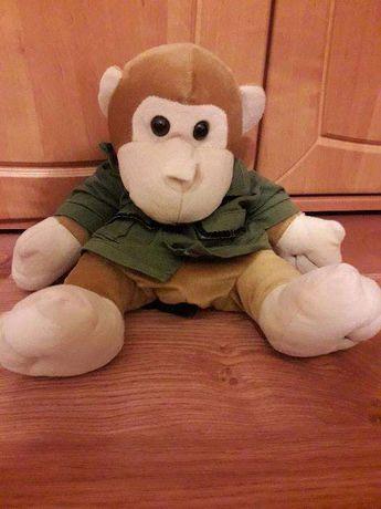 Mały plecaczek małpka