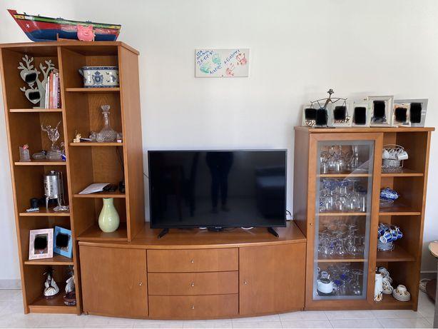 Vende-se móvel tv completo