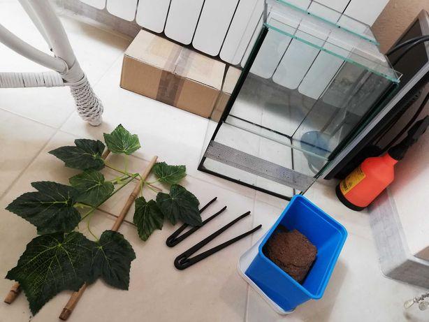 Terrarium, roślina, torf kokosowy, pensety zestaw terra 25x25x35cm