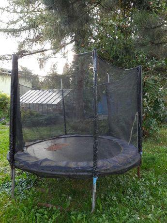 Trampolina. Ogrodowa batuta. Ogrodowa trampolina. Taanio!