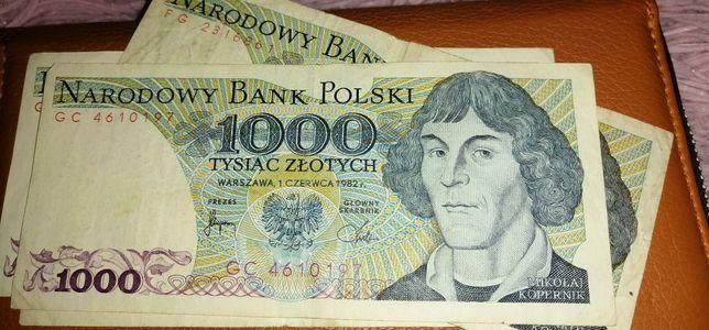 Польская 1000