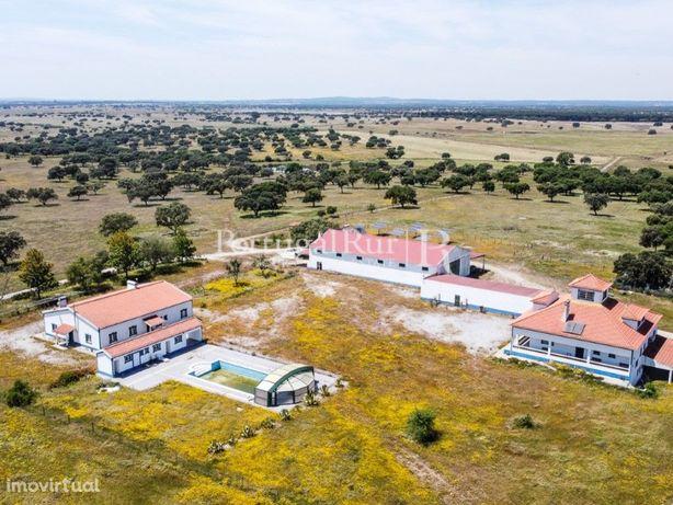 Herdade de 234 ha com 3 casas e 1 pavilhão, em Évora