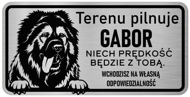 Uwaga Pies Tabliczka nierdzewna Kaukaz z imieniem Psa
