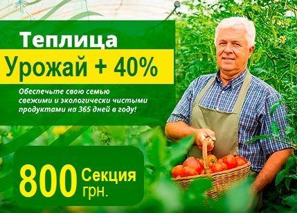 Теплица УРОЖАЙКА купить в Запорожье AN-12 под Поликарбонат 3мм