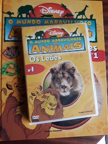 Mundo Maravilhoso dos animais livro + DVD