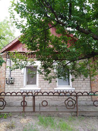 продам дом в с. Чкаловка