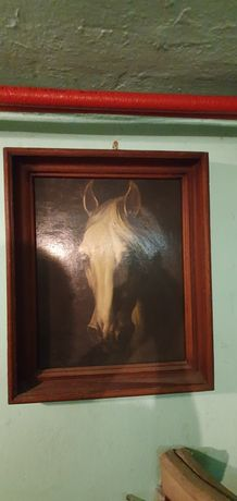 Obraz łeb konia reprodukcja
