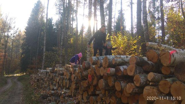 Przecieranie drewna, trak taśmowy tartak deski krokwie wiata, taras