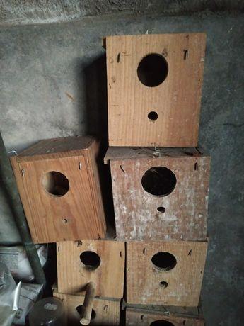 Ninhos para pássaros