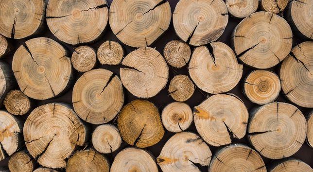 Drewno kominkowe opalowe .