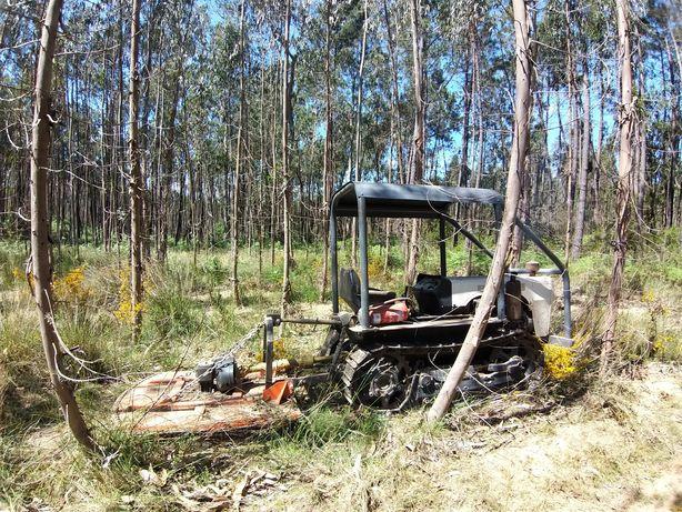 Desmatacao / limpeza terrenos agrícolas florestais
