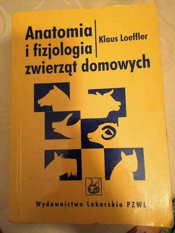 Anatomia i fizjologia zwierząt domowych Klaus Loeffler