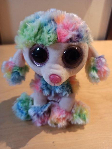 """""""Ty"""", Pluszak, Pies Rainbow, Duże oczy"""