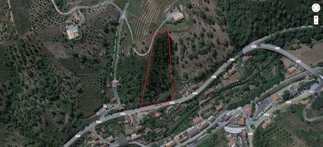 Terreno Rústico 10.375m2 Luzianes-Gare Odemira