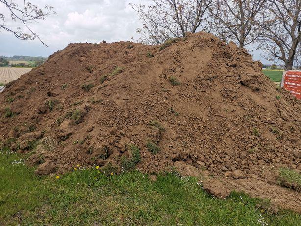 Oddam ziemię humus Abramowice Prywatne