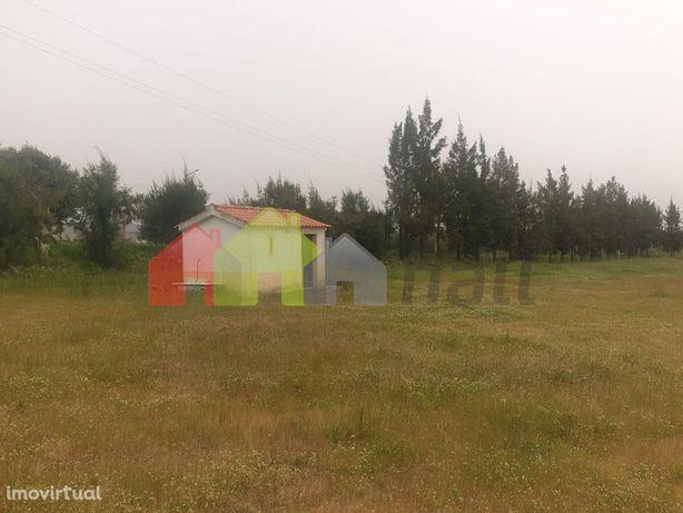 Terreno Agrícola- Vila de Frades, Vidigueira, Alentejo