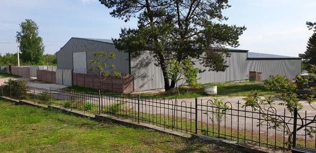 Срочно! Продажа производственно-складского комплекса 1200м2 + земля