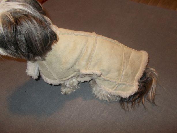 ubranko dla pieska -kożuszek