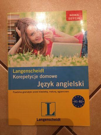 Książka Korepetycje domowe język angielski