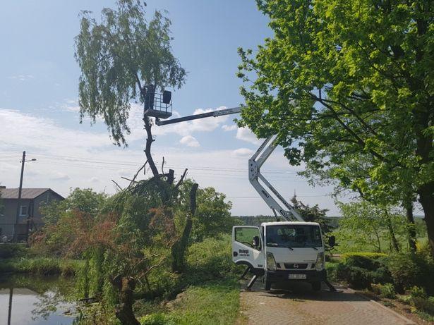 Wycinka drzew Wycinanie przycinanie rębak zwyzka podnosnik koszowy