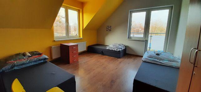 wynajmę pokoje dla pracowników, kwatery