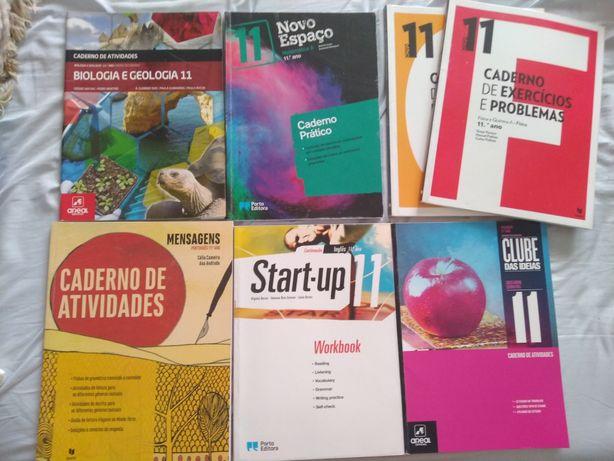 Cadernos atividades 11 ano
