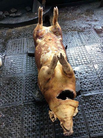 Продам битых свиней,бекон-72.сало-68